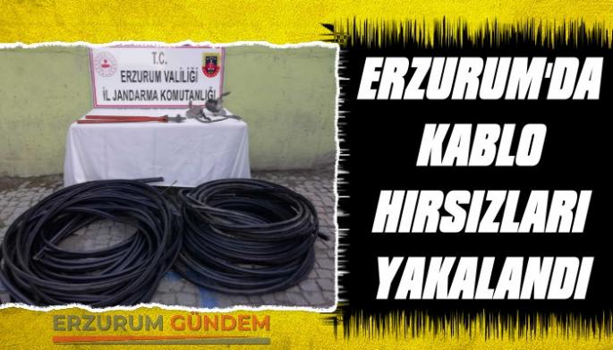 Erzurum'da Kablo Hırsızları Yakalandı