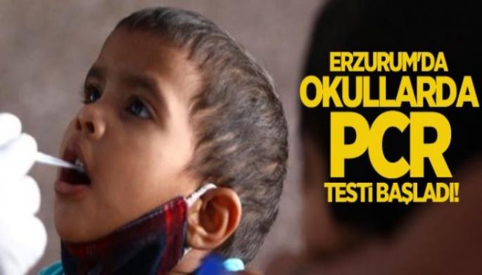 Erzurum'da Okullarda PCR Testi Dönemi