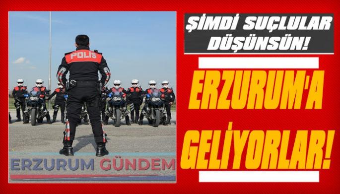 Erzurum'da Yunus Polisi Ekipleri Kuruluyor