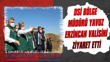 DSİ Bölge Müdürü Yavuz Erzincan Valisini Ziyaret Etti