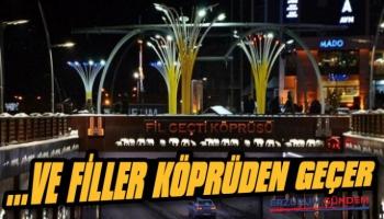 Erzurum Fil Geçti Köprüsünün İlginç Hikayesi!