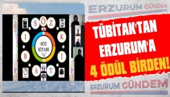 TÜBİTAK'tan Erzurum'a 4 Ödül Birden!